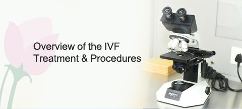 IVF-Treatment procedure and Treatment